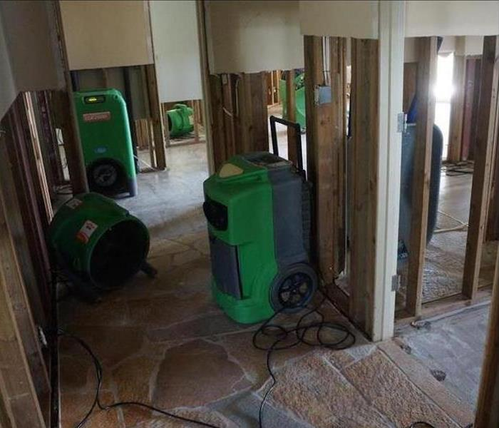 Mold Damage – Carson City House After