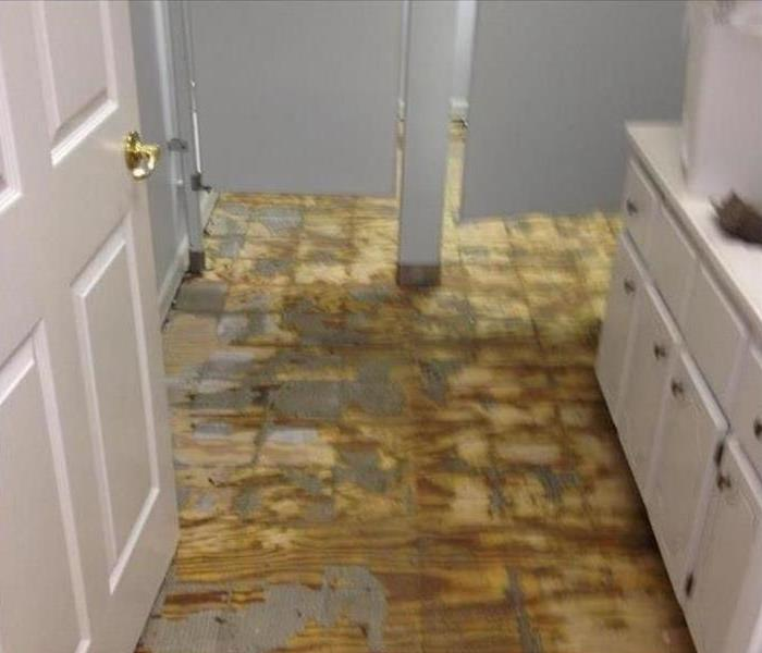 Commercial Water Damage – Carson City Before