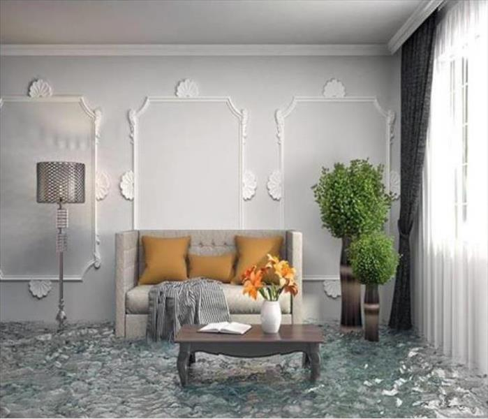 Standing water inside living room area
