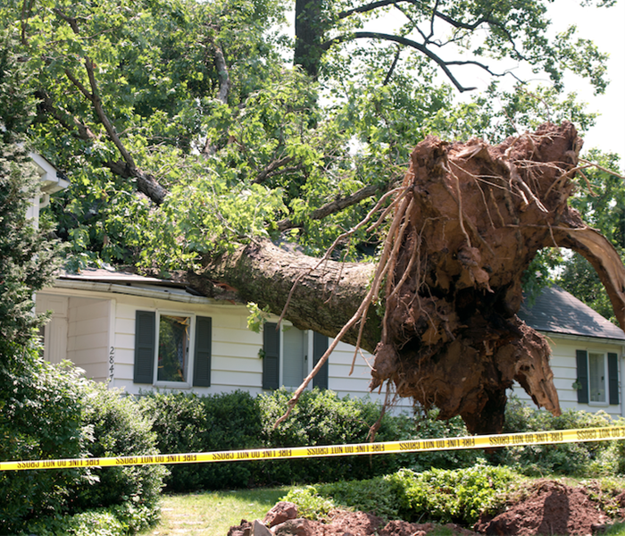 Storm Damage Storm Damage Can Occur in Any Storm