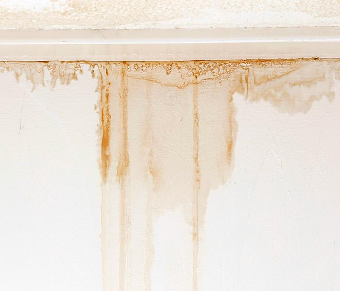 Water Damage Carson City Water Damage - Carson City Water Damage Can Come In Many And Various Types