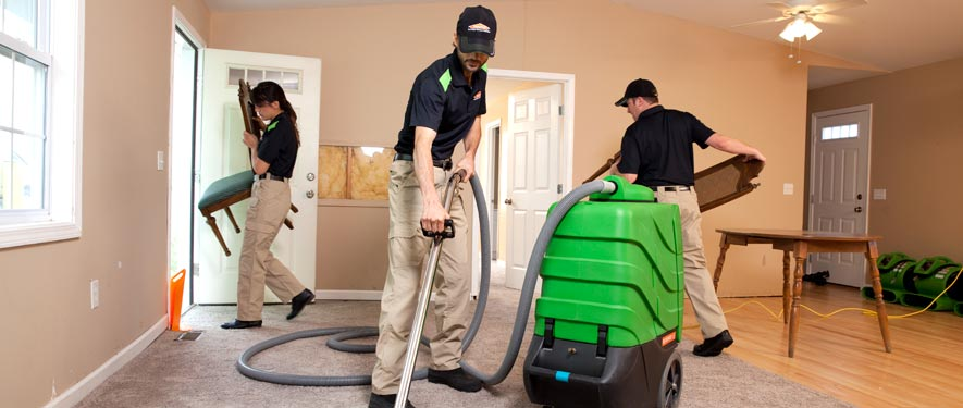 Carson City, NV cleaning services